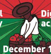 2014.12.18-MigrantsDay-WEB-1290x425
