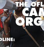 Posting-CampaignOrganizer-WEB